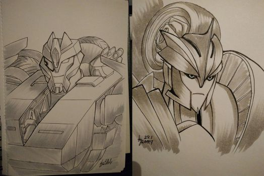 TFP - Breakdown and Knock Out portraits by pika