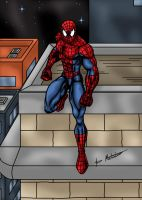 Spider-man on the Rooftops by jmaturino