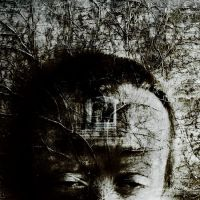 headroom by calis